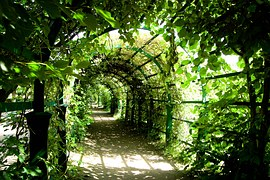 green archway